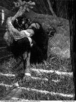 Dark Fantasy, Bernie Wrightson, Frankenstein
