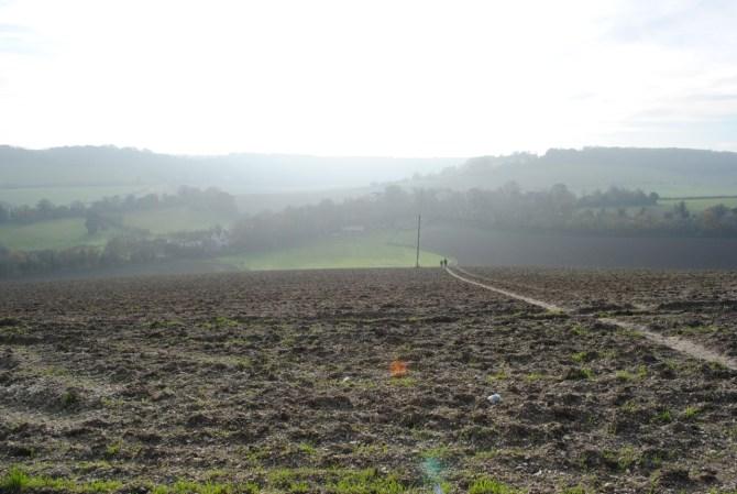 Field, Cobham, Kent