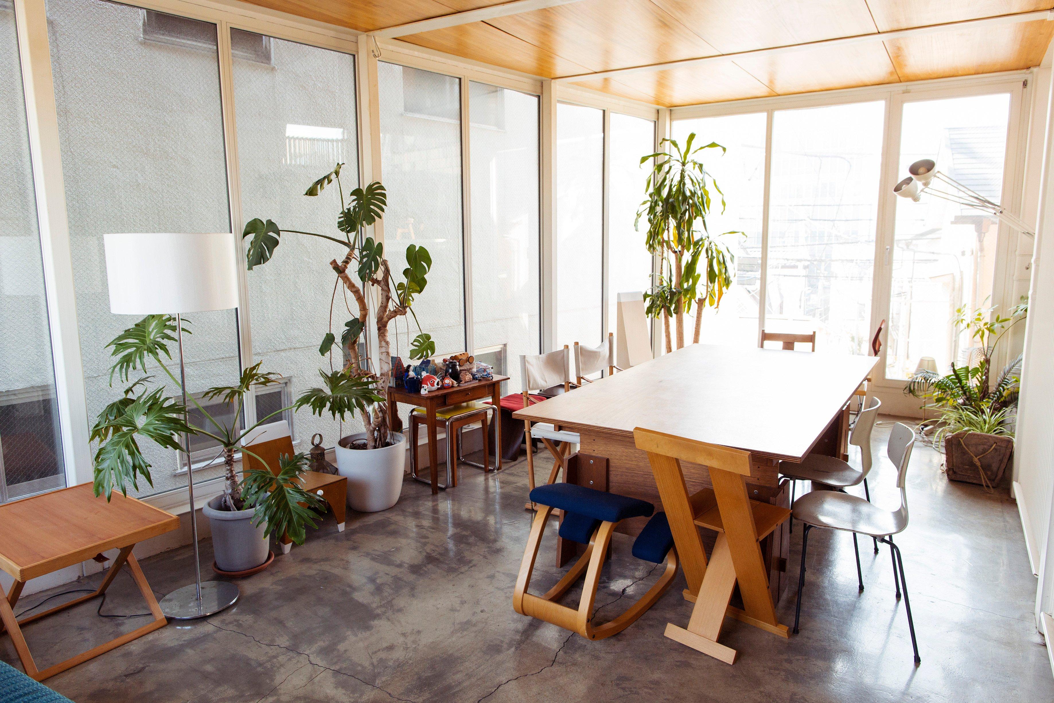 indoor plants tokyo