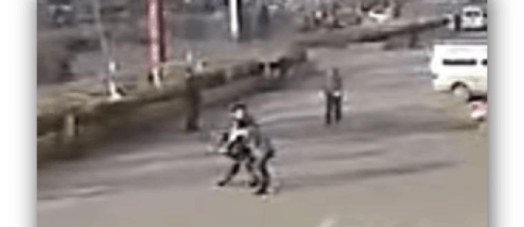The Most Brutal Attack Ever Captured on Video