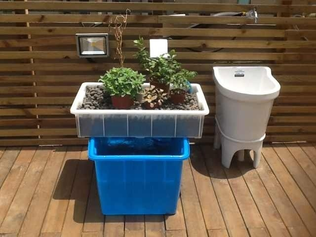12 DIY Aquaponics System For Indoor And Backyard