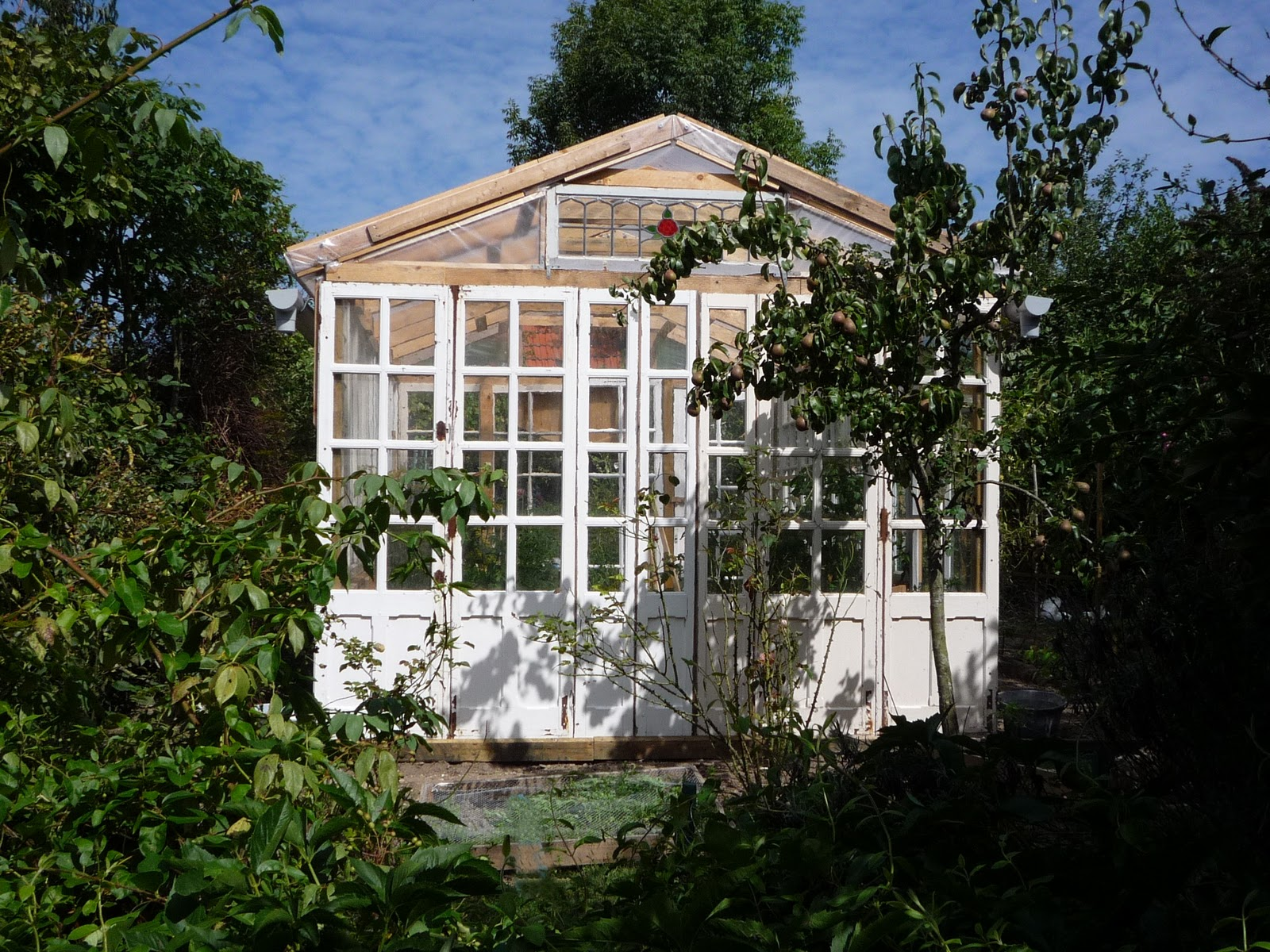 12 Wood Greenhouse Plans You Can Build Easily
