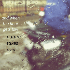 and when / the floor / gets low / nature / takes / over