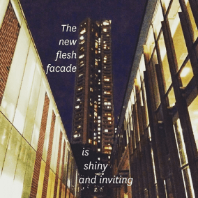 The new flesh facade / is / shiny / and inviting