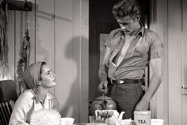 James Dean definitely knew how to rock the short sleeve.  Most off us are not James dean material, so be careful-- or you could end up looking like a creepy handyman.  The lesson here is to be confident, at ease, and give it some style.
