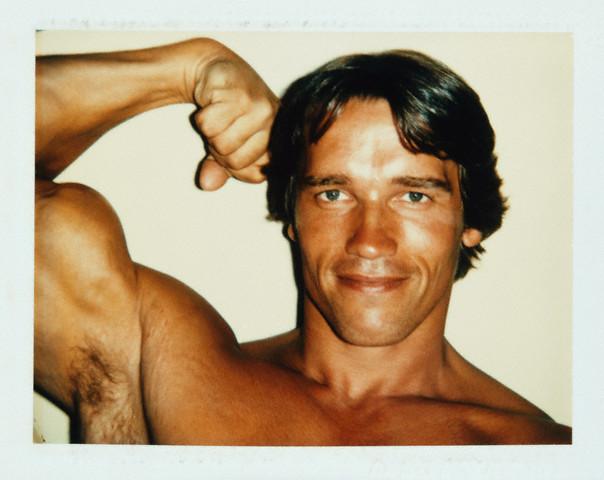 Arnold Schwarzenegger  --by Andy Warhol