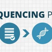 the genome sequencing process