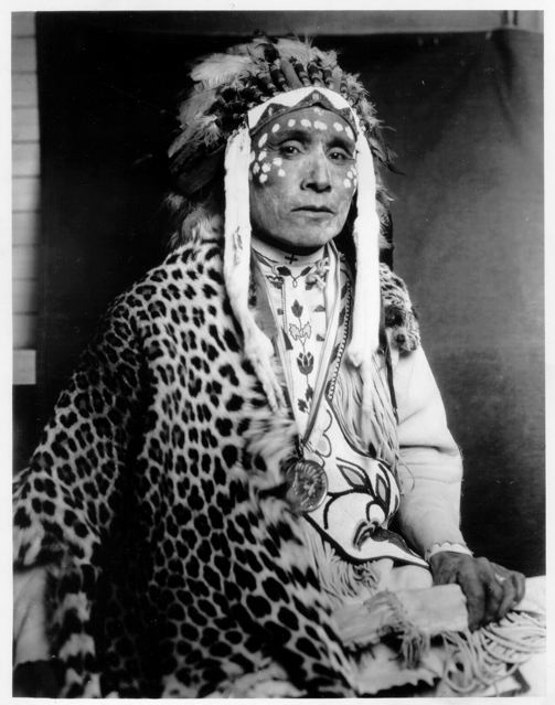 leopard chief