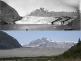Carroll Glacier, Alaska. August 1906 and June 21, 2004