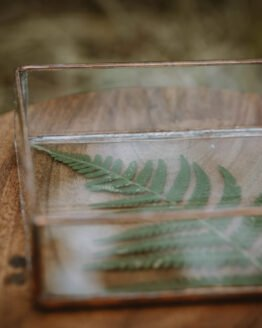 Fern jewellery dish main