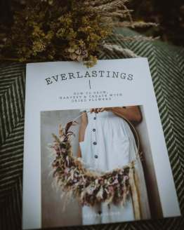 everlastings book main shot
