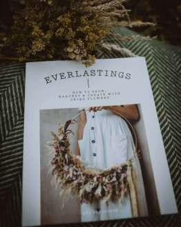 everlastings book main shot