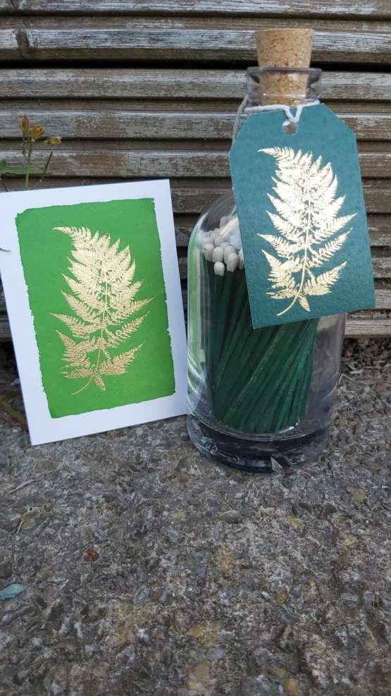 gold fern green matches