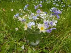 jar of wildflowers