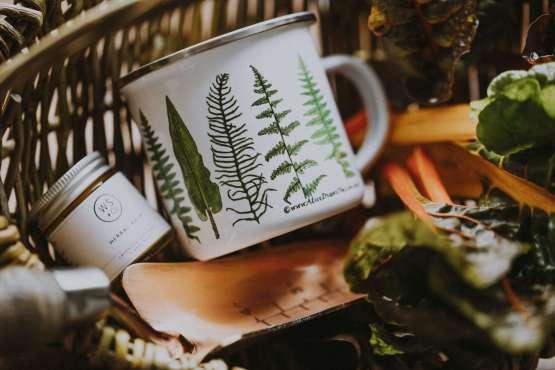 new fern mug shot