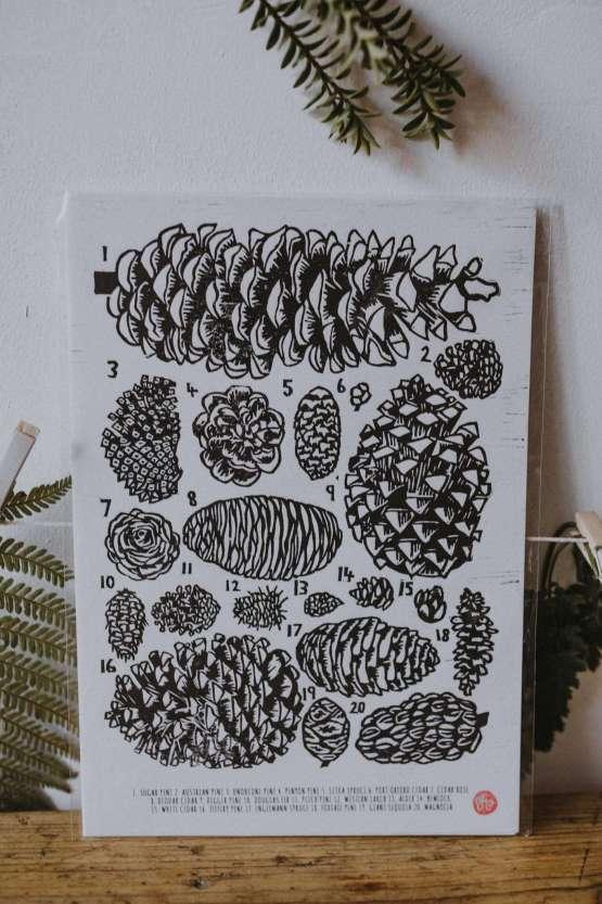 pinecone art print