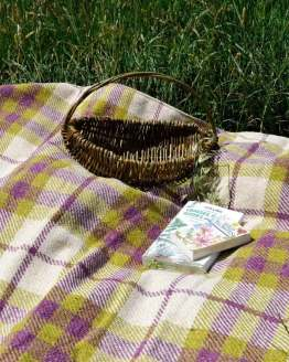 berry-grass-picnic-blanket-roll