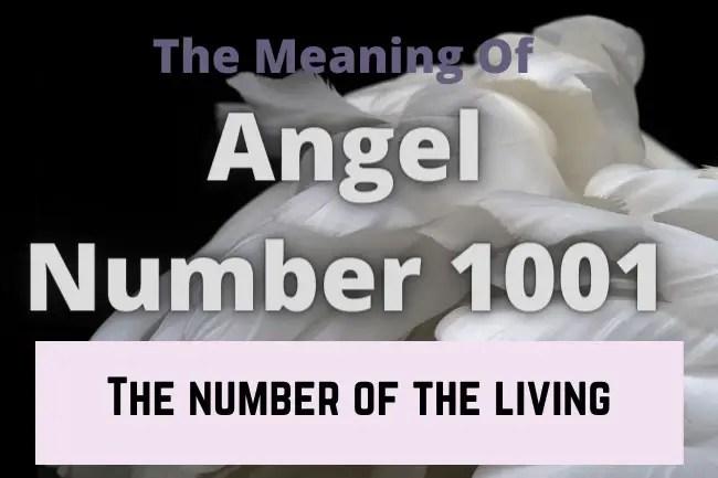angel number 1001