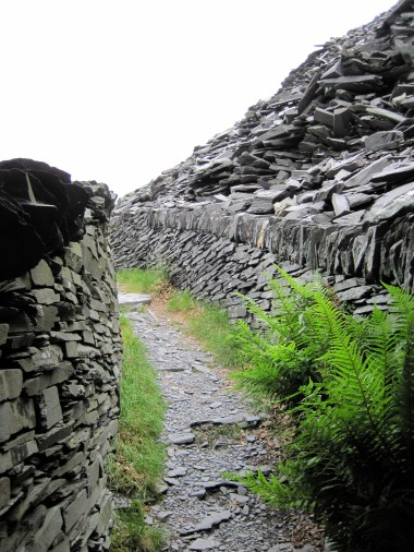 A path up through the slate quarry.