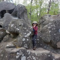 Bouldering in Fontainebleau with a Toddler
