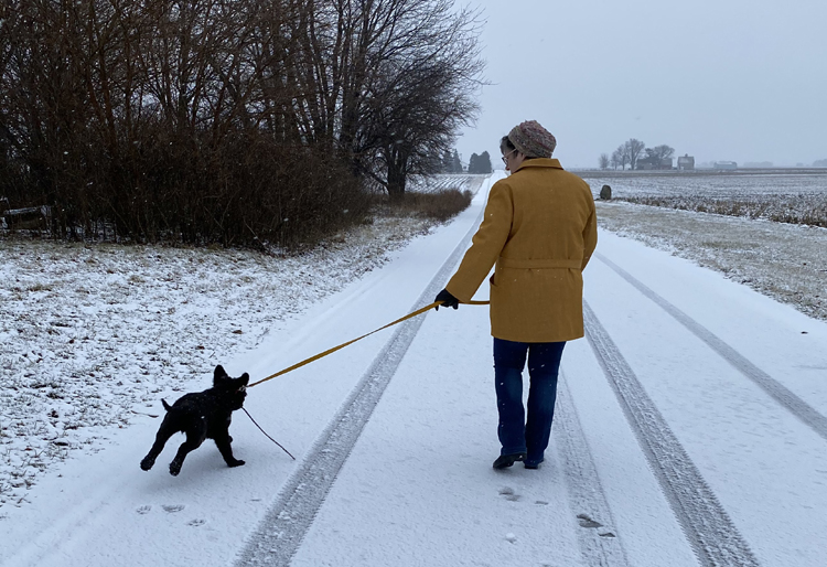 Liz walks Vinnie down the snowy lane. Vinnie is bouncing and running as Liz patiently holds his lead and directs him along. Her Sienna jacket is seen from the back, with the belt crossing near the waist and around to her right side.