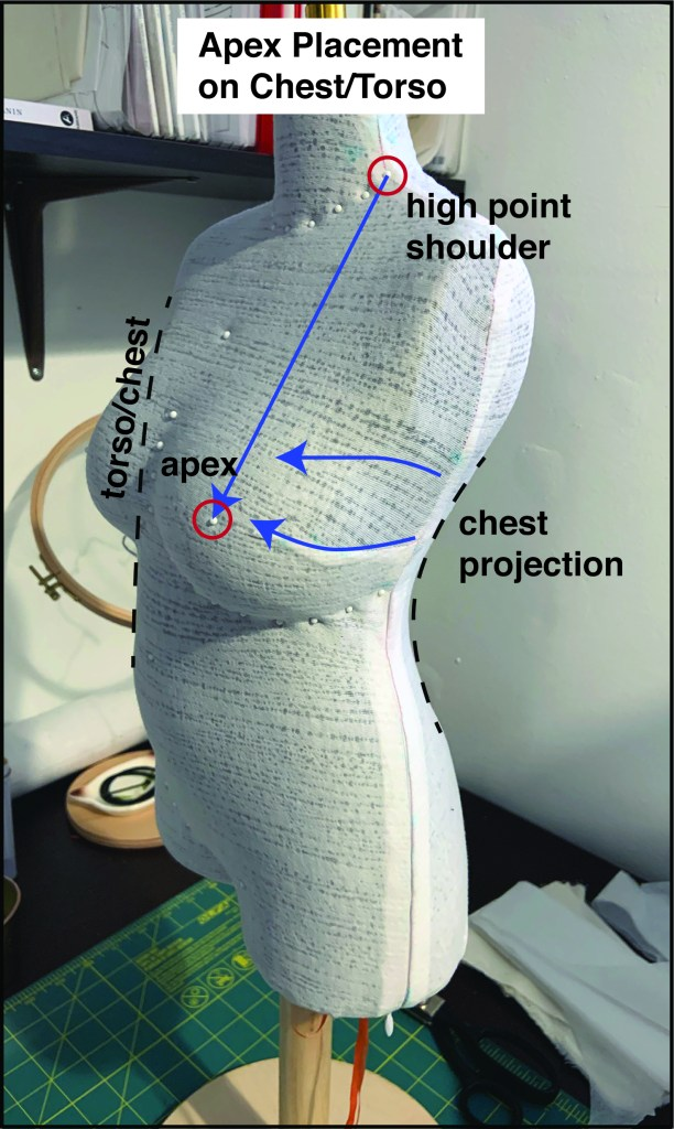 Gabby's dressform, in a 3/4 view, showing how to measure from the high point shoulder (where the shoulder meets the neck) to the apex (fullest part of the bust). There are also arrows to show the chest projection where the bust is fullest.