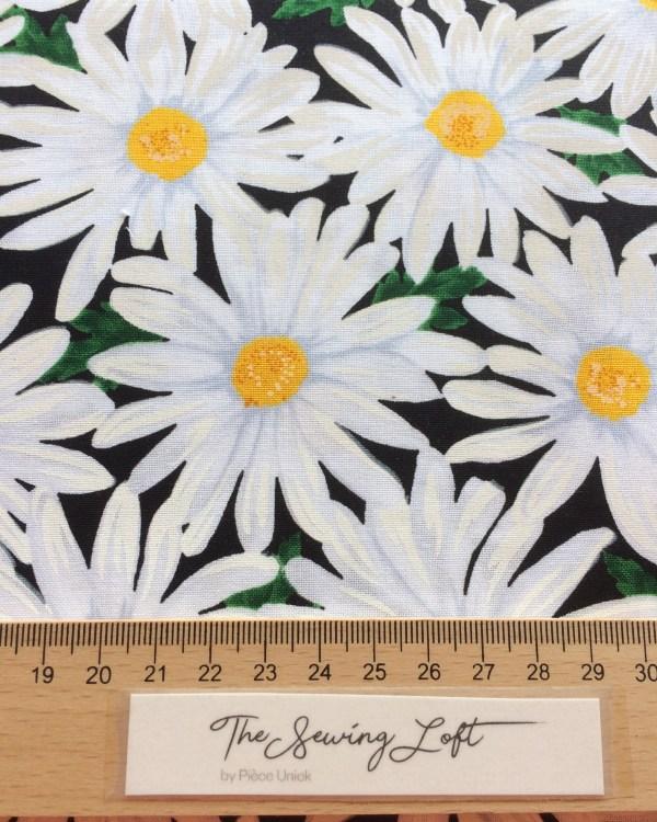 oh daisy!