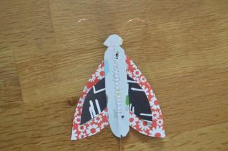 moths 007