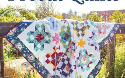 Playful Precut Quilts Pattern Book