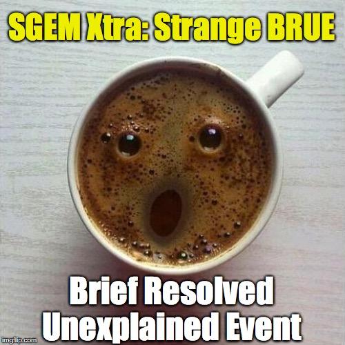 SGEM Memes BRUE