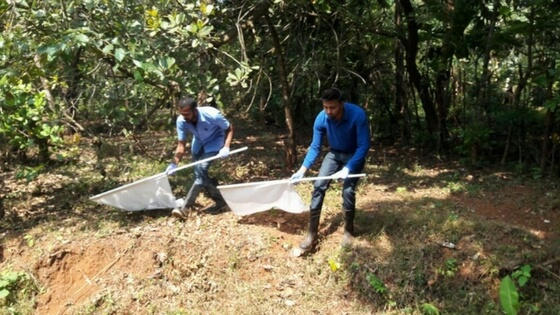 Safety measures intensified in Valpoi Goa for Kaysanur Forest disease (KFD)