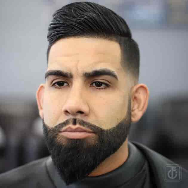 paranoma beard style