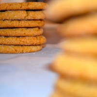 Flavor | Molasses Cookies