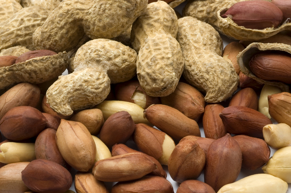 Close up of tasty and fresh peanuts