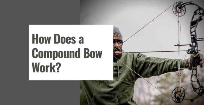 How Does a Compound Bow Work?