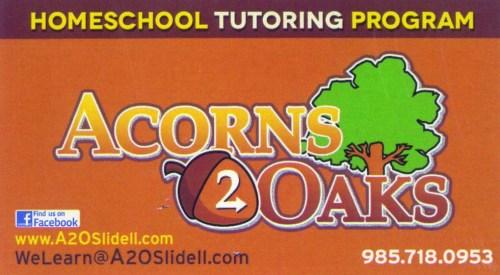 Acorns 2 Oaks
