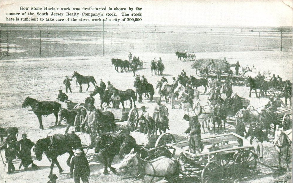postcardhorses