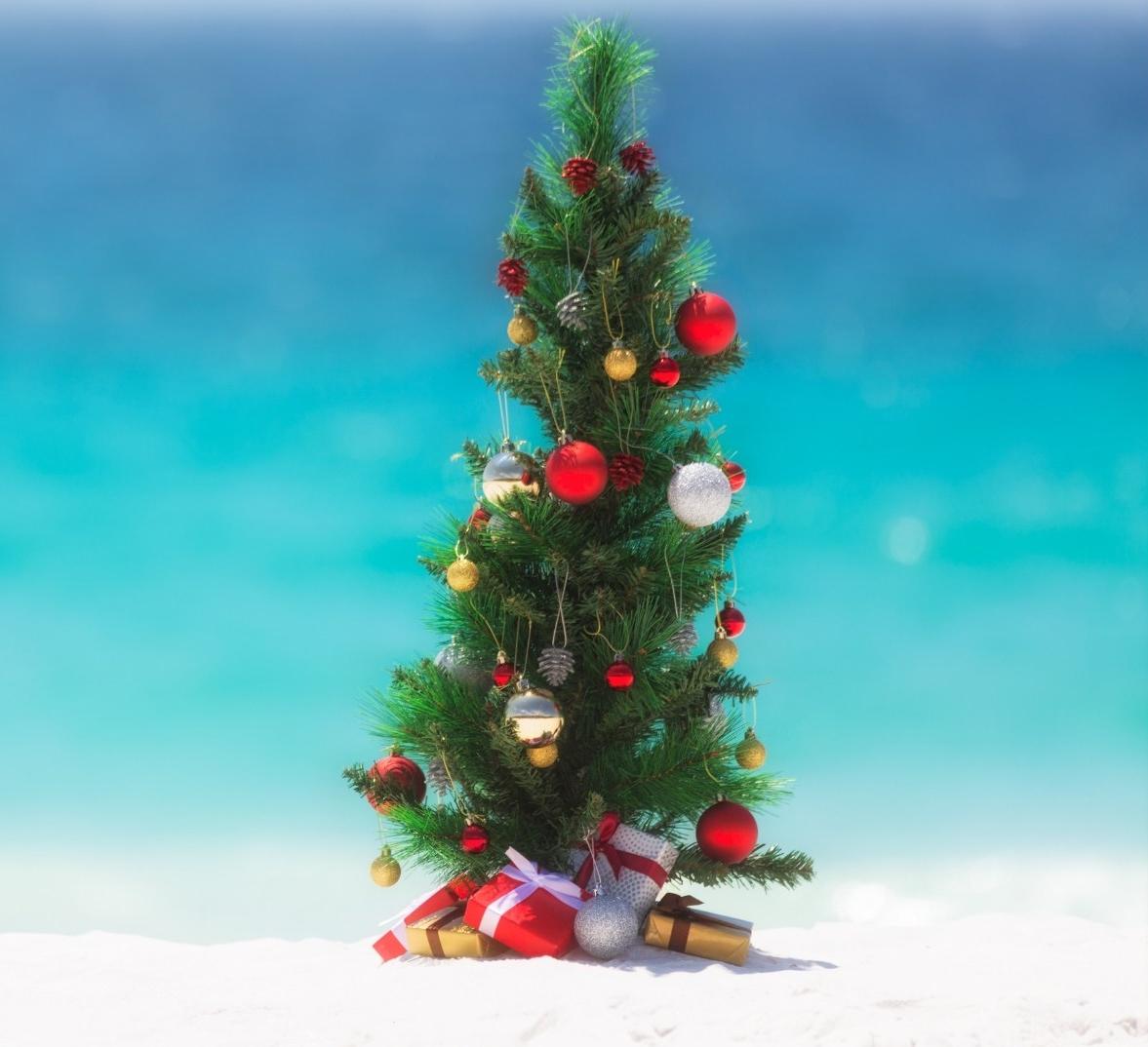 christmastreeonbeach.jpg