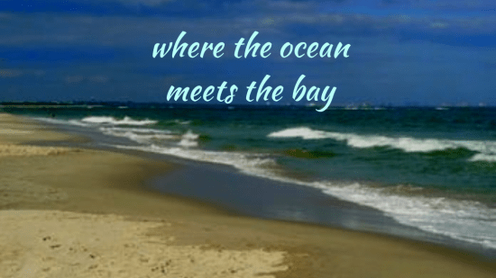 Where The Ocean Meets the Bay