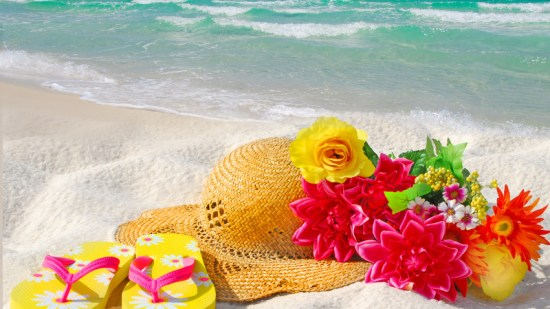 Cool Things To Do at the Shore This Spring
