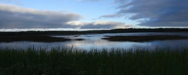 wetlandsinstitute1.jpg