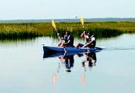 wetlandsinstitute11