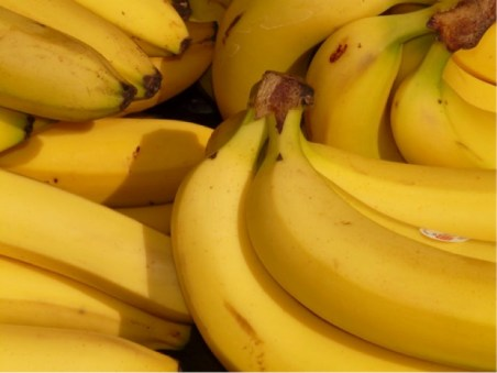 eating bananas helps with opioid withdrawal