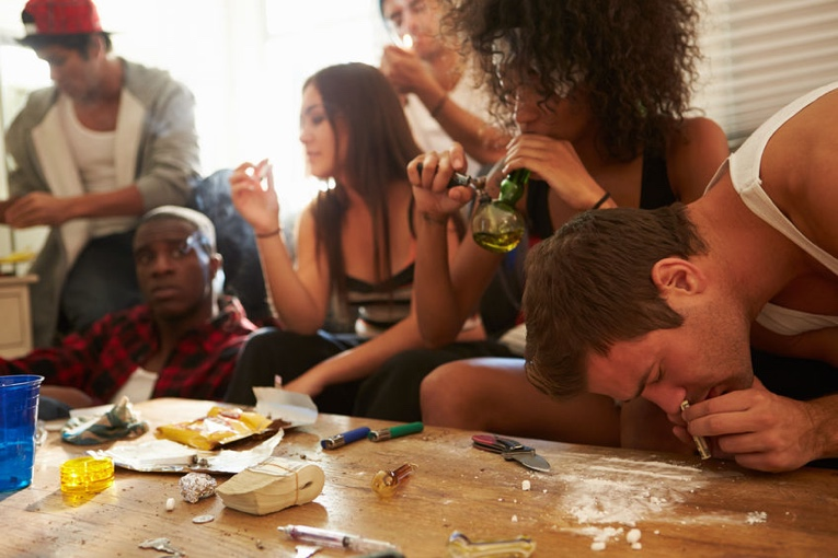 The Drug Culture as Diverse Tribes