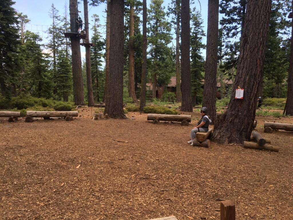 Tahoe Treetop Adventures