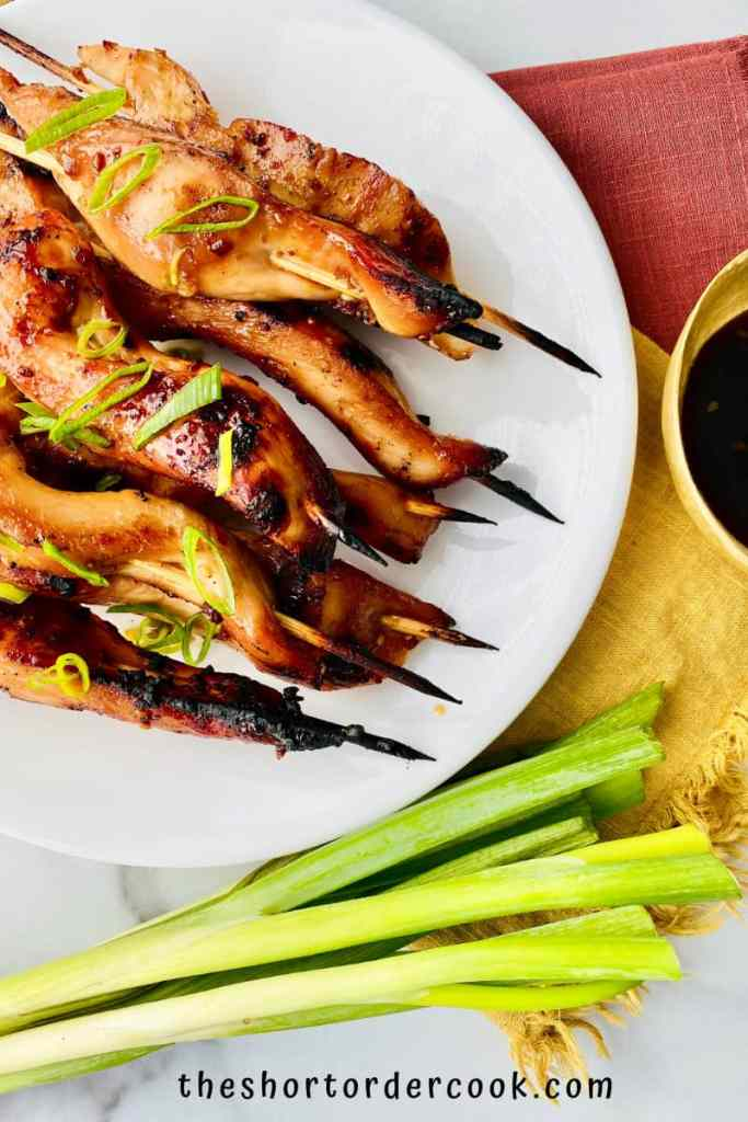 Teriyaki Chicken on a Stick complete on a plate with green onions to the bottom and extra teriyaki in a bowl to the side