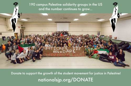 2017-nsjp-donate-graphic_2_orig.jpg