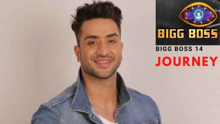 Bigg Boss 14: Aly Goni's adventurous yet emotional Bigg Boss 14 journey, Read more about Aly Goni