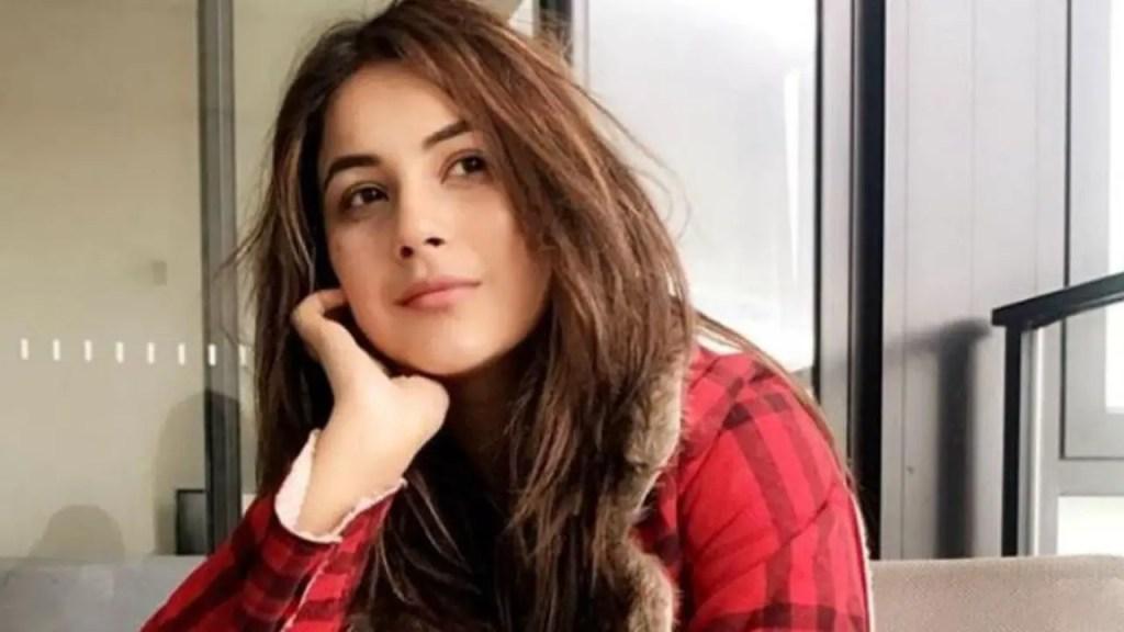 Shehnaaz Gill will be featuring in Badshah's next music video.