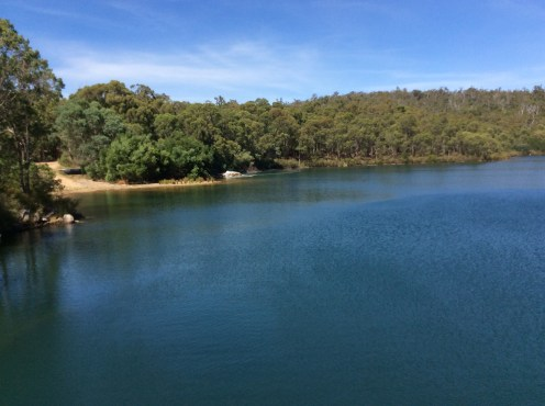 Serpentine Pipehead Reservoir